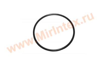 INTEX Уплотнительное кольцо для титанового электрода