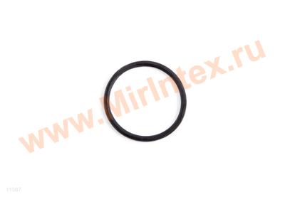 INTEX Уплотнительное кольцо A